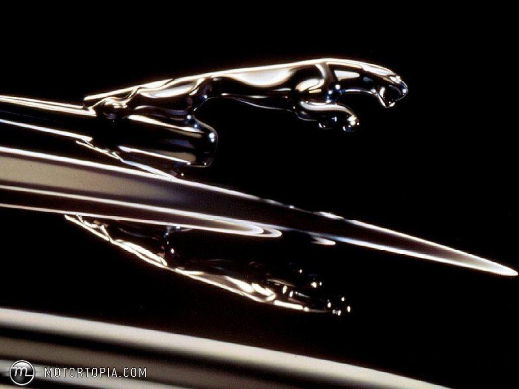 Stainless steel ornaments -  Ornament Jaguar Chrome Leaper Hood Emblem