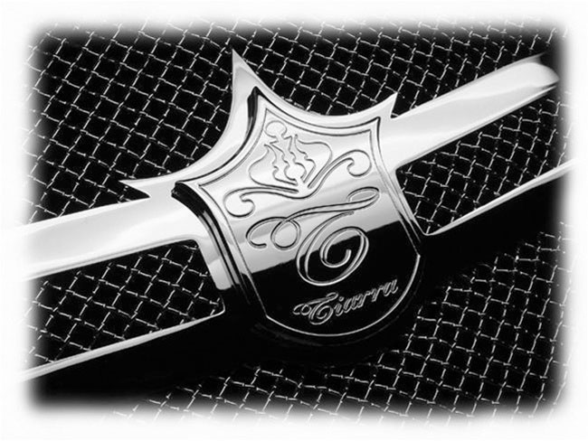 Mercedes Benz S 550 Chrome Bentley Dual Weave Mesh Grille